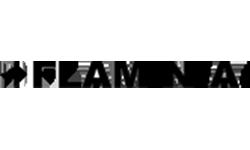Logo Ceramica Flaminia